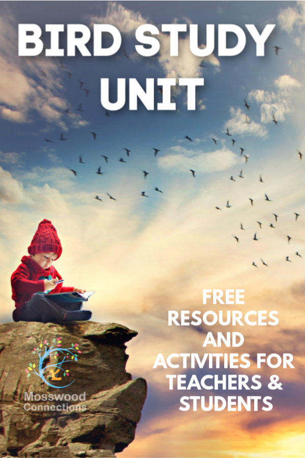 Bird Study Unit; Free Resources and Activities for Elementary Age Students #mosswoodconnections #science #animalscience #education #homeschooling #birdstudyunit