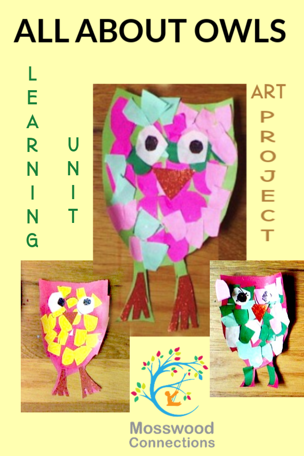 Owl Learning Unit and Art Project #mosswoodconnections #artproject #studyunit #owls