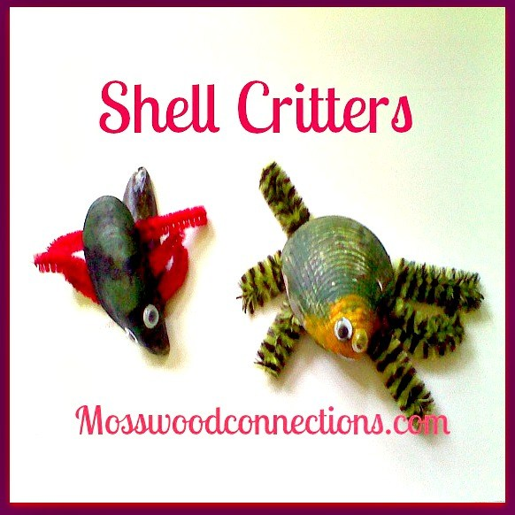 Shell-Critter Craft Project #mosswoodconnections