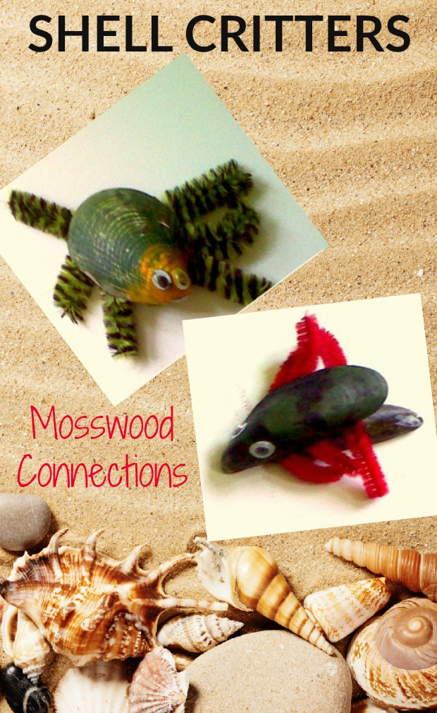Shell Critters Craft Project #mosswoodconnections #craftsforkids #shellart