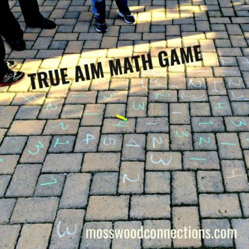 True Aim Math Game; An Active Math Game the Kids Love to Play #mosswoodconnections #mathfacts #learningthroughplay #education #homeschool
