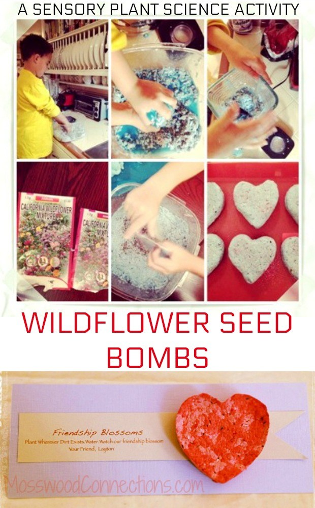 Wildflower Seed Bombs- a Sensory Garden Project #mosswoodconnections #gardeningwithkids #seedbombs #sensory #Valentine's