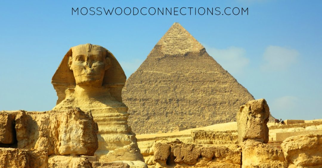 Free Online Educational Resources for Kids #homeschooling #mosswoodconnections #education