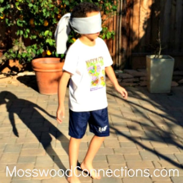 Auditory Hide and Seek: an Auditory Processing Game #mosswoodconnections #auditoryprocessing #activelearning #listeningskills #followingdirections