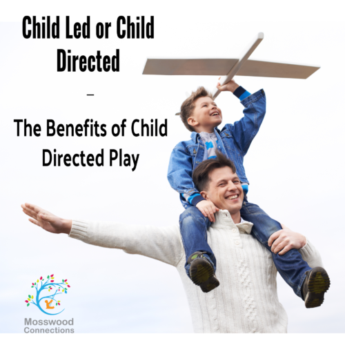 Child Led or Child Directed – The Benefits of Child Directed Play #mosswoodconnections #autism #ASD
