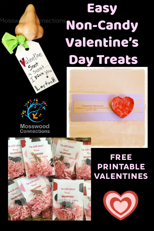 44d5a099e39d Easy Non-Candy Valentine's Day Treats #mosswoodconnections #Valentines  #crafts #non-