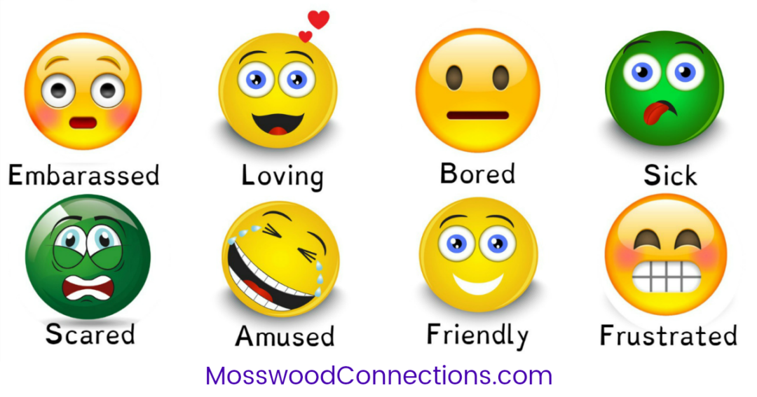 Feelings and Emotions Scavenger Hunt #mosswoodconnections #autism #socialskills #feelings