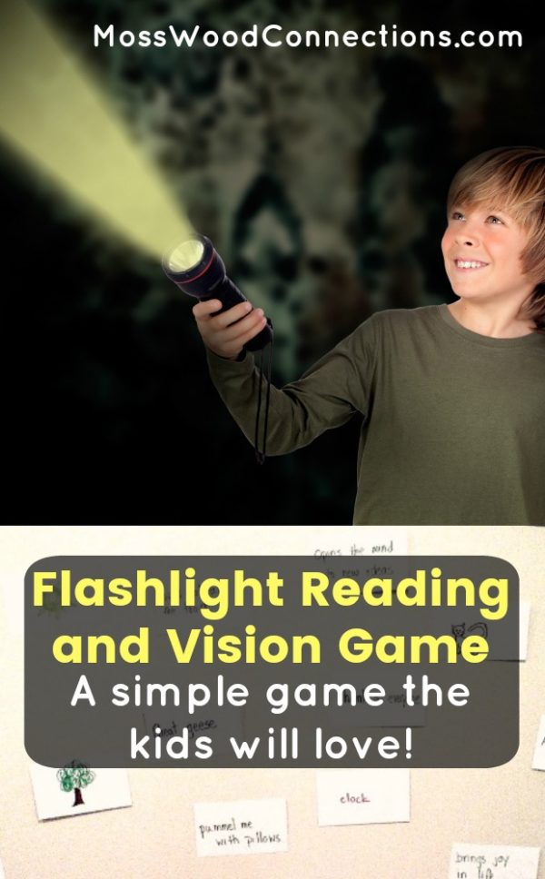 Flashlight Reading and Vision Game #mosswoodconnections #visualprocessing #visionskills #learningtoread #sightwords