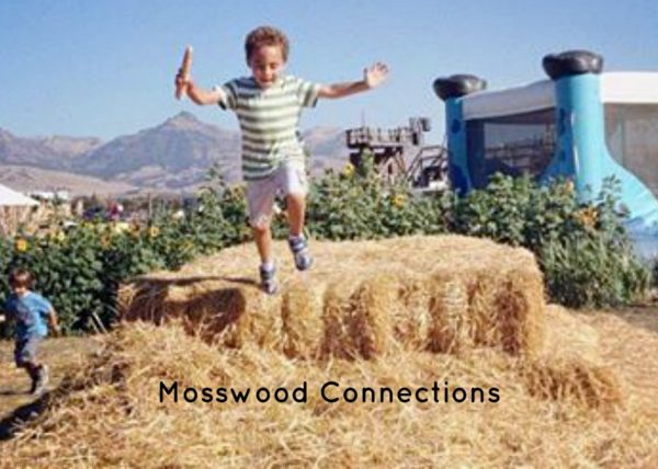 Tips for Teaching Social Skills to Kids #mosswoodconnections #autism #activelearning #socialskills #makingfriends