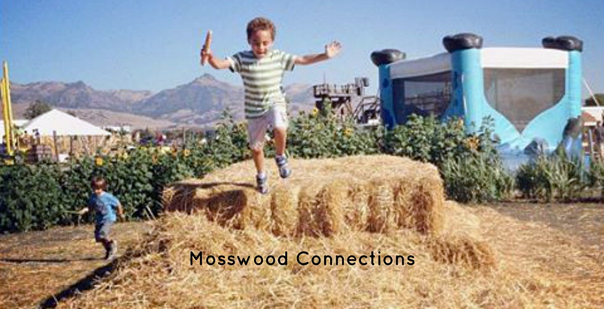 Be a Social Spy – Perspective Taking Activity #mosswoodconnections #perspectivetaking #autism #ASD #Socialskills